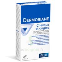 Pileje Dermobiane Cheveux & Ongles 40 Gélules à IS-SUR-TILLE