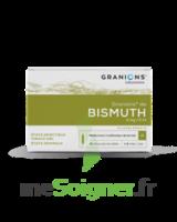 GRANIONS DE BISMUTH 2 mg/2 ml S buv 10Amp/2ml à IS-SUR-TILLE