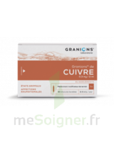 Granions De Cuivre 0,3 Mg/2 Ml S Buv 30amp/2ml à IS-SUR-TILLE