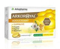 Arkoroyal Propolis Pastilles Adoucissante Gorge Guimauve Miel Citron B/24 à IS-SUR-TILLE