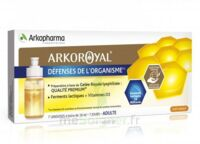 Arkoroyal Défenses Naturelles Gelée adulte 7 Doses/10ml à IS-SUR-TILLE