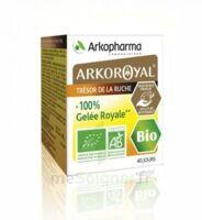 Arkoroyal 100% Gelée Royale Bio Gelée Pot/40g à IS-SUR-TILLE