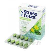 Stress Resist Comprimés Stress & Fatigue B/30 à IS-SUR-TILLE