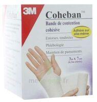 Coheban, Blanc 3 M X 7 Cm à IS-SUR-TILLE
