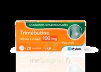 Trimebutine Mylan Conseil 100 Mg, Comprimé à IS-SUR-TILLE
