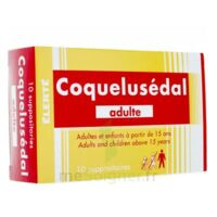 COQUELUSEDAL ADULTES, suppositoire à IS-SUR-TILLE