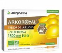 Arkoroyal Gelée Royale Bio 1500 Mg Solution Buvable 20 Ampoules/10ml à IS-SUR-TILLE