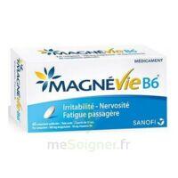 Magnevie B6 100 Mg/10 Mg Comprimés Pelliculés Plaq/60 à IS-SUR-TILLE