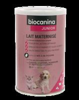 Biocanina Lait poudre maternisé B/400g à IS-SUR-TILLE