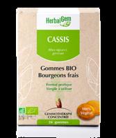 Herbalgem Gomme Cassis Bio B/24 à IS-SUR-TILLE