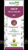 Herbalgem Sirop Bio Des Fumeurs 150ml à IS-SUR-TILLE
