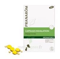 Aromaforce Caps Inhalation Bio B/15 + Inhalateur à IS-SUR-TILLE