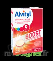 Alvityl Boost Comprimés B/20 à IS-SUR-TILLE