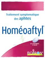 Boiron Homéoaftyl Comprimés à IS-SUR-TILLE