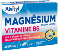 Govital Magnésium Vitamine B6 Comprimés B/45 à IS-SUR-TILLE
