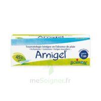 Boiron Arnigel Gel T(alumino-plastique)/45g à IS-SUR-TILLE