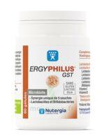Nutergia Ergyphilus Gst Gélules B/60 à IS-SUR-TILLE