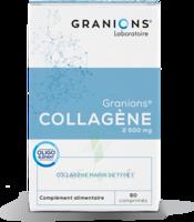 Granions Collagene Cpr B/60 à IS-SUR-TILLE