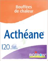 Boiron Acthéane Comprimés B/120 à IS-SUR-TILLE